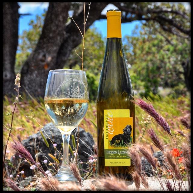 Montana Dandelion Wine